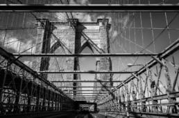 Roman Martin-New York